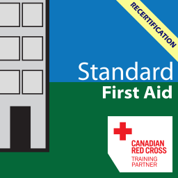 Standard First Aid and BLS Recert