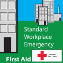 Standard First Aid [previously Standard Workplace Emergency First Aid]
